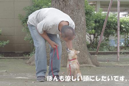 http://blog.cnobi.jp/v1/blog/user/5372066eaa7f42ee290a4176dda1b356/1405936145