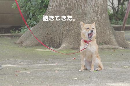 http://blog.cnobi.jp/v1/blog/user/5372066eaa7f42ee290a4176dda1b356/1405936152