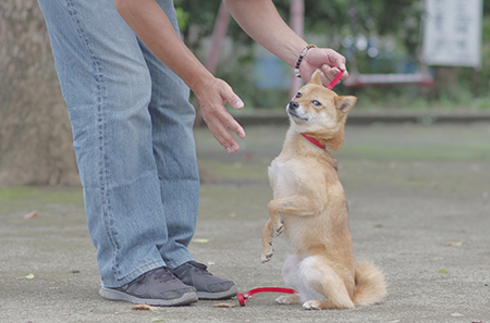 http://file.udon.sakeblog.net/IMGP4722.jpg