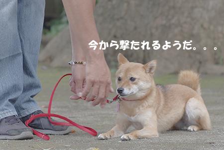 http://blog.cnobi.jp/v1/blog/user/5372066eaa7f42ee290a4176dda1b356/1405936159