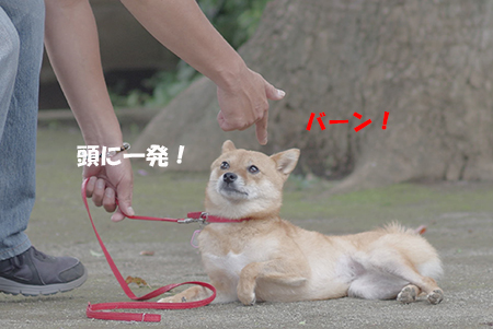 http://blog.cnobi.jp/v1/blog/user/5372066eaa7f42ee290a4176dda1b356/1405936170