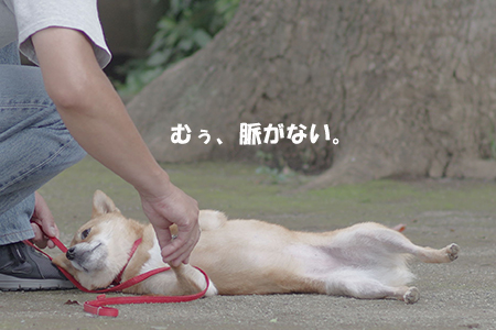 http://blog.cnobi.jp/v1/blog/user/5372066eaa7f42ee290a4176dda1b356/1405936173