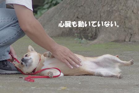 http://blog.cnobi.jp/v1/blog/user/5372066eaa7f42ee290a4176dda1b356/1405936179