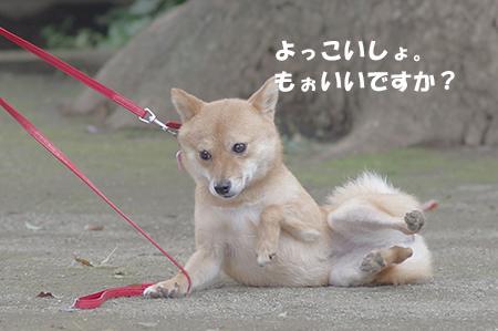 http://blog.cnobi.jp/v1/blog/user/5372066eaa7f42ee290a4176dda1b356/1405936182