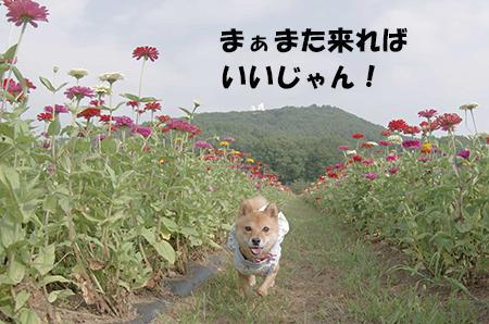 http://blog.cnobi.jp/v1/blog/user/5372066eaa7f42ee290a4176dda1b356/1406723677