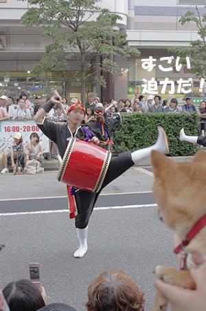 http://file.udon.sakeblog.net/IMGP5113.jpg