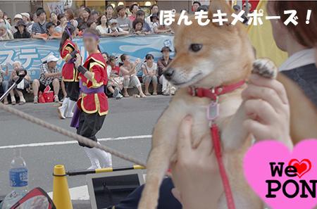 http://file.udon.sakeblog.net/IMGP5110.jpg