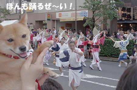 http://file.udon.sakeblog.net/IMGP5111.jpg