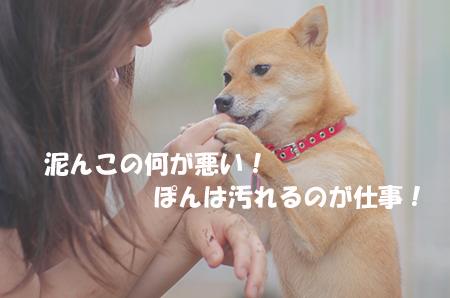 http://blog.cnobi.jp/v1/blog/user/5372066eaa7f42ee290a4176dda1b356/1407756189