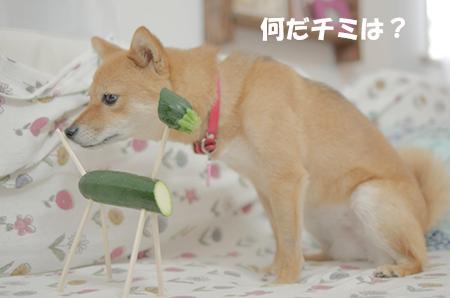 http://blog.cnobi.jp/v1/blog/user/5372066eaa7f42ee290a4176dda1b356/1408000835