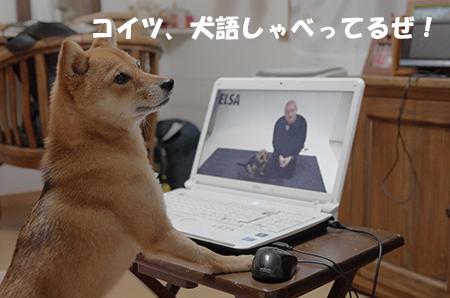 http://blog.cnobi.jp/v1/blog/user/5372066eaa7f42ee290a4176dda1b356/1408100994