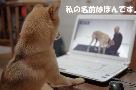 http://blog.cnobi.jp/v1/blog/user/5372066eaa7f42ee290a4176dda1b356/1408101003