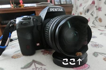 http://blog.cnobi.jp/v1/blog/user/5372066eaa7f42ee290a4176dda1b356/1408340512