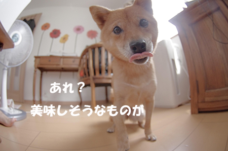 http://blog.cnobi.jp/v1/blog/user/5372066eaa7f42ee290a4176dda1b356/1408340562