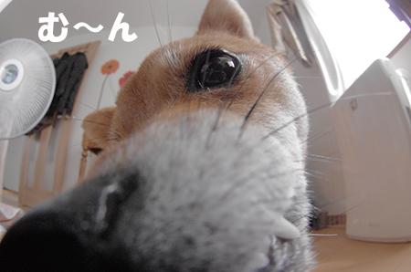 http://blog.cnobi.jp/v1/blog/user/5372066eaa7f42ee290a4176dda1b356/1408340568