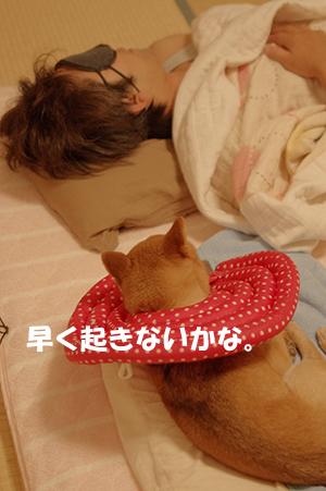 http://file.udon.sakeblog.net/IMGP5323.jpg