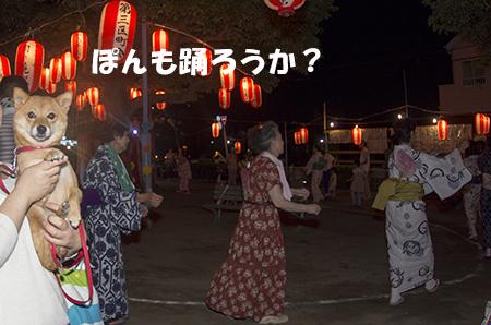 http://file.udon.sakeblog.net/IMGP5613.jpg