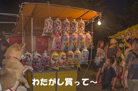 http://file.udon.sakeblog.net/IMGP5597.jpg