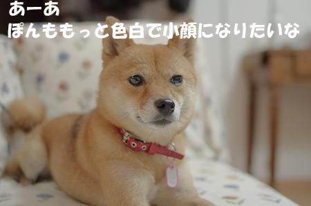 http://blog.cnobi.jp/v1/blog/user/5372066eaa7f42ee290a4176dda1b356/1408883564