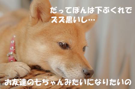 http://blog.cnobi.jp/v1/blog/user/5372066eaa7f42ee290a4176dda1b356/1408884129