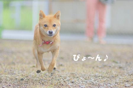 http://blog.cnobi.jp/v1/blog/user/5372066eaa7f42ee290a4176dda1b356/1409055181