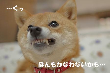 http://blog.cnobi.jp/v1/blog/user/5372066eaa7f42ee290a4176dda1b356/1409056458