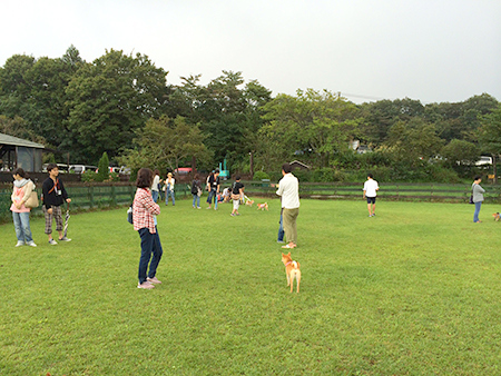http://blog.cnobi.jp/v1/blog/user/5372066eaa7f42ee290a4176dda1b356/1410076193