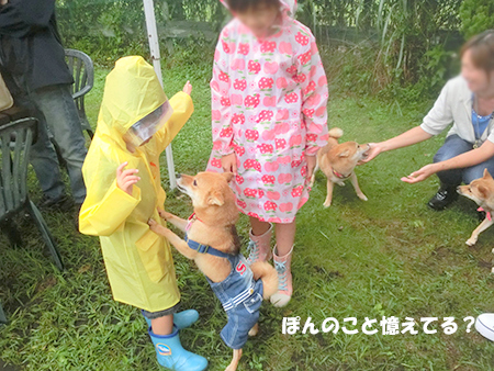 http://blog.cnobi.jp/v1/blog/user/5372066eaa7f42ee290a4176dda1b356/1410076200