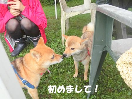 http://blog.cnobi.jp/v1/blog/user/5372066eaa7f42ee290a4176dda1b356/1410076203