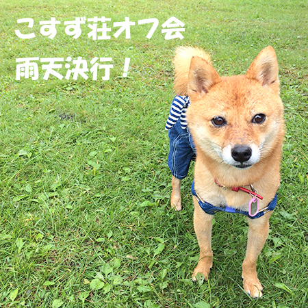 http://blog.cnobi.jp/v1/blog/user/5372066eaa7f42ee290a4176dda1b356/1410076208