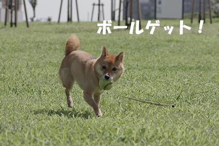 http://blog.cnobi.jp/v1/blog/user/5372066eaa7f42ee290a4176dda1b356/1410494264
