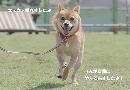 http://blog.cnobi.jp/v1/blog/user/5372066eaa7f42ee290a4176dda1b356/1410494849