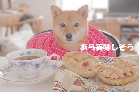 http://blog.cnobi.jp/v1/blog/user/5372066eaa7f42ee290a4176dda1b356/1410771155