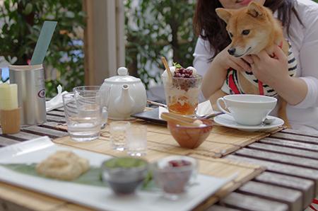 http://file.udon.sakeblog.net/IMGP5860.jpg