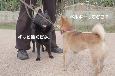 http://blog.cnobi.jp/v1/blog/user/5372066eaa7f42ee290a4176dda1b356/1411434452