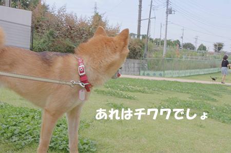 http://blog.cnobi.jp/v1/blog/user/5372066eaa7f42ee290a4176dda1b356/1411434457