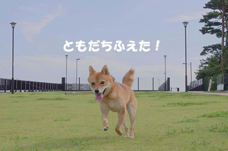 http://blog.cnobi.jp/v1/blog/user/5372066eaa7f42ee290a4176dda1b356/1411434460