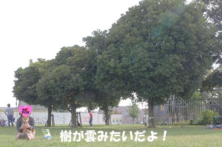 http://blog.cnobi.jp/v1/blog/user/5372066eaa7f42ee290a4176dda1b356/1411434464