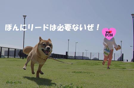 http://blog.cnobi.jp/v1/blog/user/5372066eaa7f42ee290a4176dda1b356/1411892902