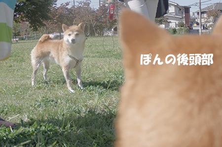 http://blog.cnobi.jp/v1/blog/user/5372066eaa7f42ee290a4176dda1b356/1411892907