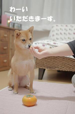 http://blog.cnobi.jp/v1/blog/user/5372066eaa7f42ee290a4176dda1b356/1413285275