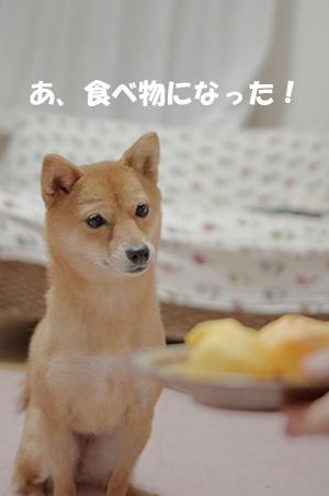 http://blog.cnobi.jp/v1/blog/user/5372066eaa7f42ee290a4176dda1b356/1413285280