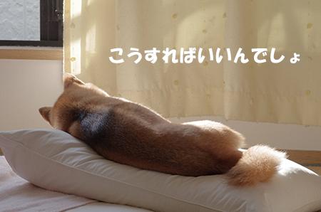 http://blog.cnobi.jp/v1/blog/user/5372066eaa7f42ee290a4176dda1b356/1413697517
