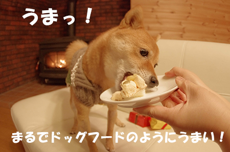 http://file.udon.sakeblog.net/IMGP6736.jpg