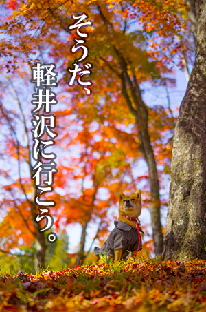 http://blog.cnobi.jp/v1/blog/user/5372066eaa7f42ee290a4176dda1b356/1414979730