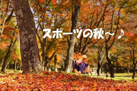 http://blog.cnobi.jp/v1/blog/user/5372066eaa7f42ee290a4176dda1b356/1414979733