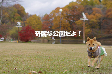 http://blog.cnobi.jp/v1/blog/user/5372066eaa7f42ee290a4176dda1b356/1415186101