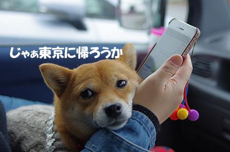 http://blog.cnobi.jp/v1/blog/user/5372066eaa7f42ee290a4176dda1b356/1415186111