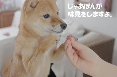 http://file.udon.sakeblog.net/IMGP6869.jpg