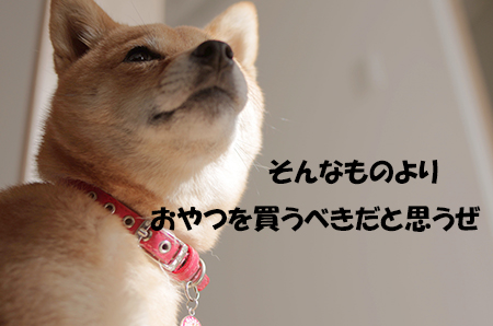 http://blog.cnobi.jp/v1/blog/user/5372066eaa7f42ee290a4176dda1b356/1416230958